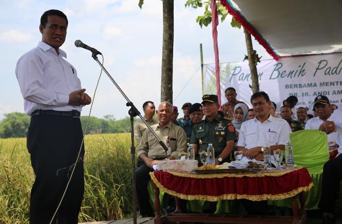 Menteri Pertanian Amran Sulaiman melakukan panen padi hibrida di Ngawi, Jawa Timur (dok. kementerian pertanian)