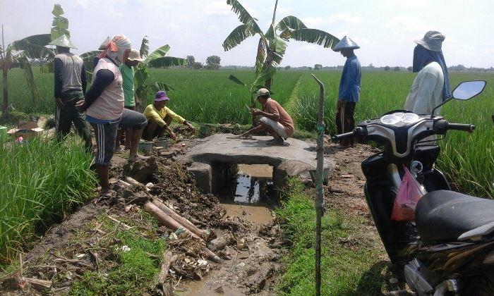 Warga desa Bunder dan desa Kalensari bekerjasama melebarkan saluran irigasi yang macet (dok. villagerspost.com/tim jurnalis desa kalensari)