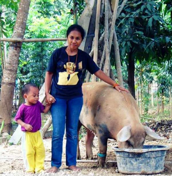 Mengunjungi sekaligus memeriksa perkembangan ternak milik pelanggan Nutrina Organik (dok. pribadi)