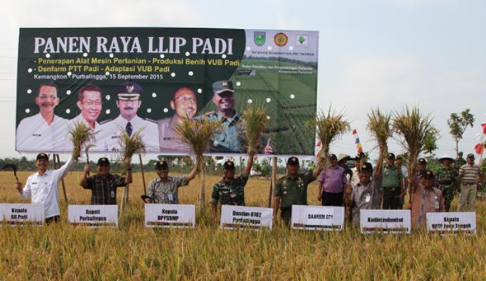 Panen raya di Purbalingga, Jawa Tengah (dok. kementerian pertanian)