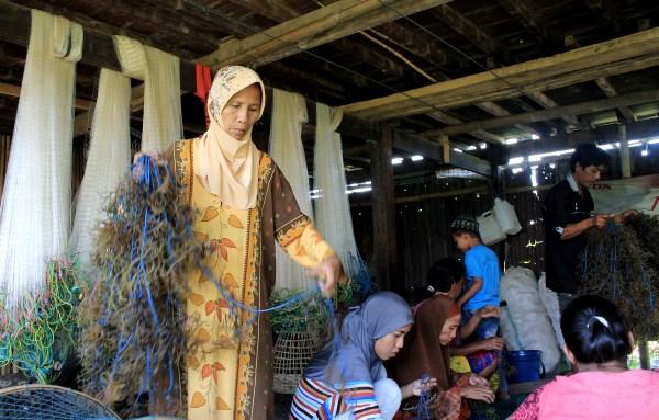 Anggota kelompok Kalaroang menyiapkan bibit rumput laut untuk ditanam (dok. villagerspost.com)