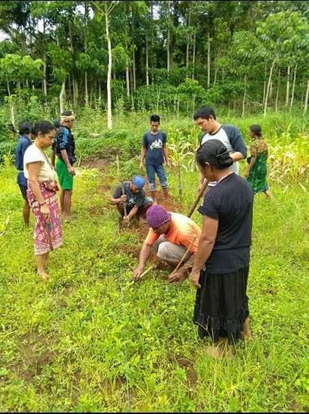 Tanah tidak perlu dicangkul, tetapi cukup dibuat lubang permanen sehingga lebih efisien (dok. villagerspost.com/rahat adinata)