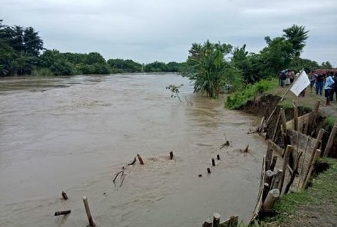 Luapan dan arus deras Sungai Pemali menggerus tanggul sungai yang sebelumnya sempat longsor (dok. villagerspost.com/bangkit nugroho sylendra)