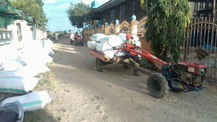 Mengangkut hasil panen dengan traktor (dok. villagerspost.com/suharjo)