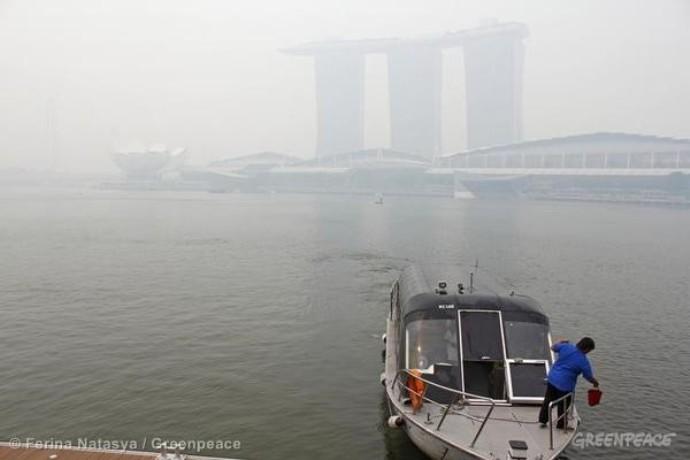Polusi udara akibat kebakaran hutan (dok. greenpeace)