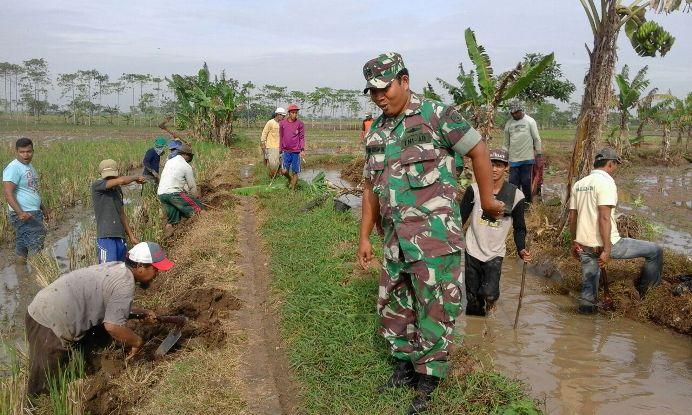 Aparat babinsa, Serma Arief ikut membantu warga membasmi tikus (dok. villagerspost.com/jurnalis warga desa kalensari)