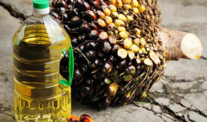 Ilustrasi produk biodiesel Indonesia (dok. bantenprov.go.id)