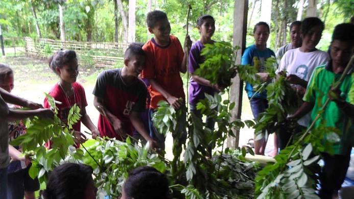Praktik bertanam sayur organik (dok. villagerspost.com/rahmat adinata)