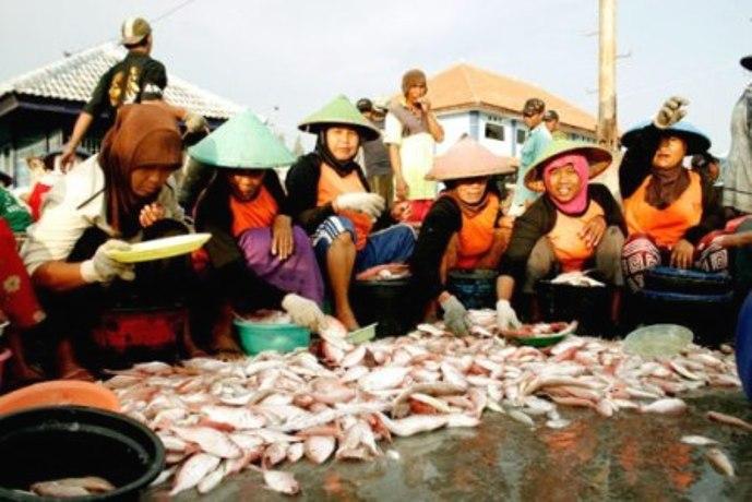 Perempuan nelayan. Penganggaran progresif gender untuk perempuan nelayan masih minim (dok. rembang.org)